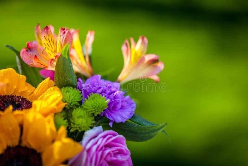Generi differenti di fiori freschi fotografia stock