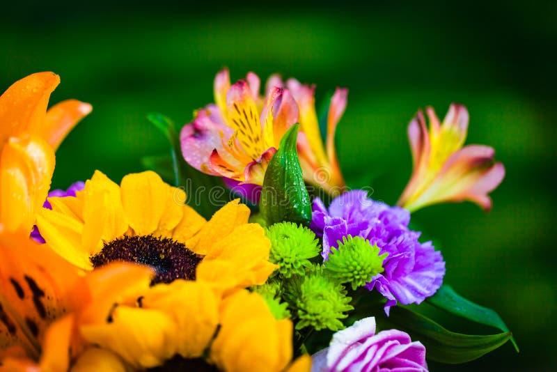 Generi differenti di fiori freschi fotografie stock libere da diritti
