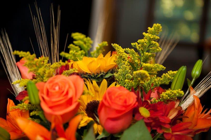 Generi differenti di fiori freschi immagini stock libere da diritti