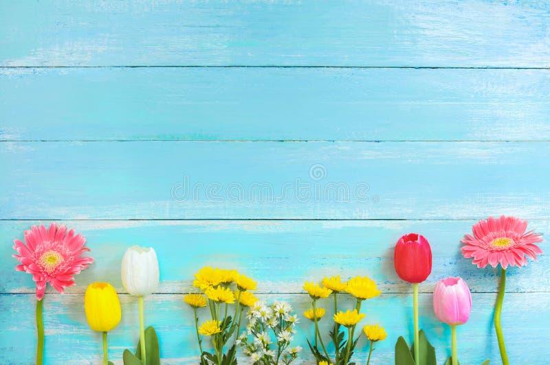 Generi differenti di fiori variopinti nella linea su fondo di legno blu immagine stock
