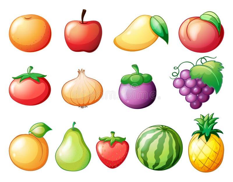 Generi differenti di frutti illustrazione vettoriale