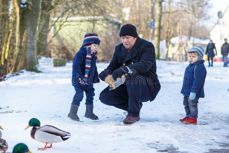 Generi e due piccoli ragazzi dei fratelli germani che alimentano le anatre nell'inverno. fotografia stock