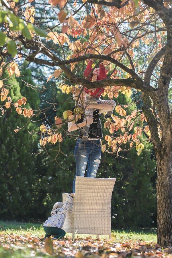 Generi la condizione su una sedia sotto l'albero cachi che tiene il suo bambino fotografie stock