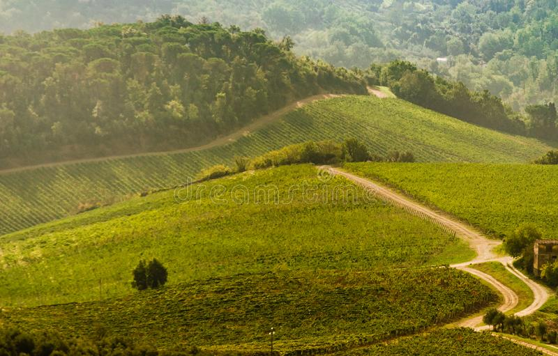 Tuscany generic hillside panorama view royalty free stock image