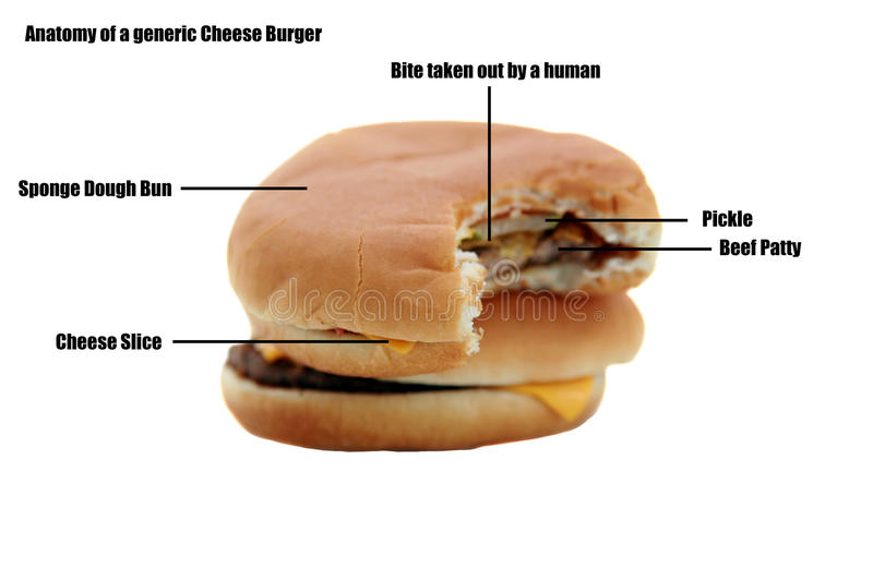 Generic cheese burger isolated on white
