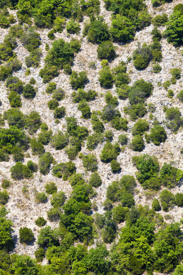 Generic mountain vegetation. Aerial view. Trees and terrain. Mountain Italian Umbrian with top view royalty free stock images