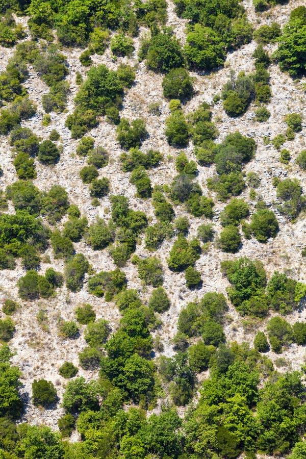 Generische bergvegetatie Lucht Mening Bomen en terrein royalty-vrije stock afbeeldingen