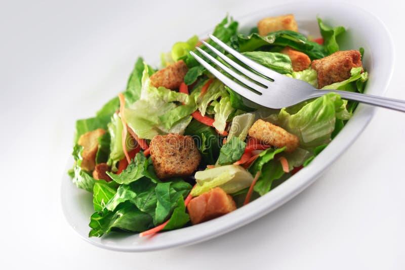 Generische Salade met vork dichte omhooggaand royalty-vrije stock afbeeldingen