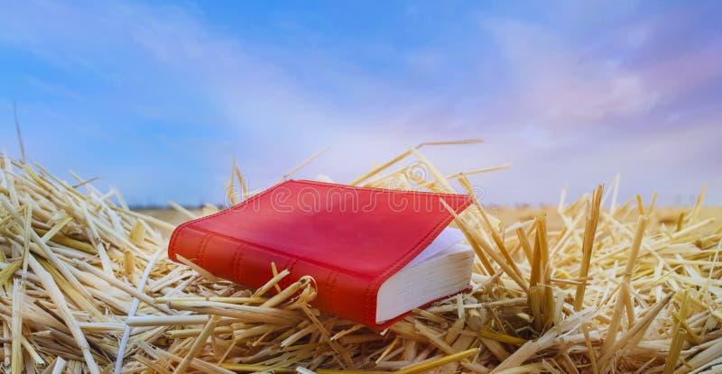 Genesis Book och skapelsehimmel royaltyfri fotografi