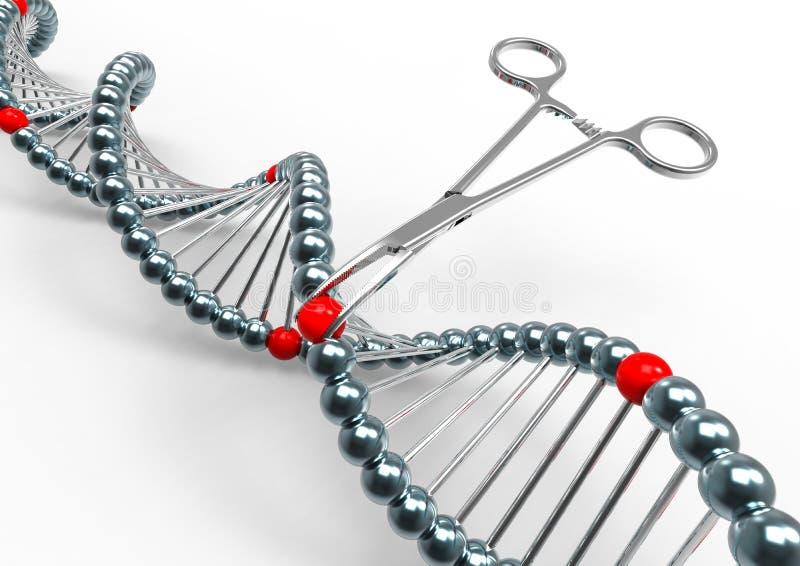 Genetic Code Engineering vector illustration