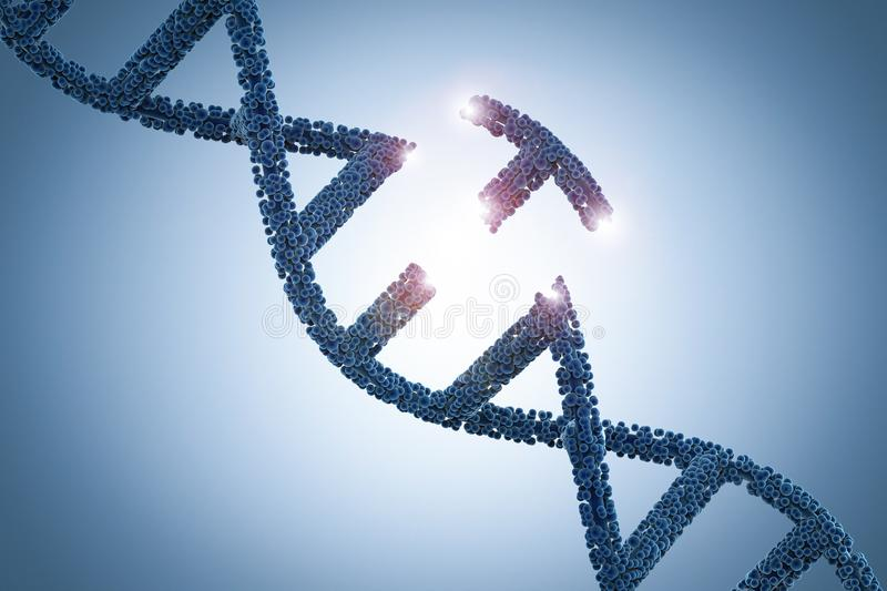 Genetic engineeering concept. With 3d rendering dna helix and a part of dna stock photography