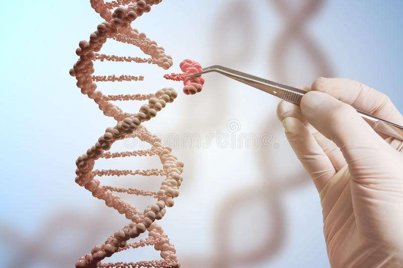 Genetic engineering and gene manipulation concept. Hand is replacing part of a DNA molecule royalty free stock photography