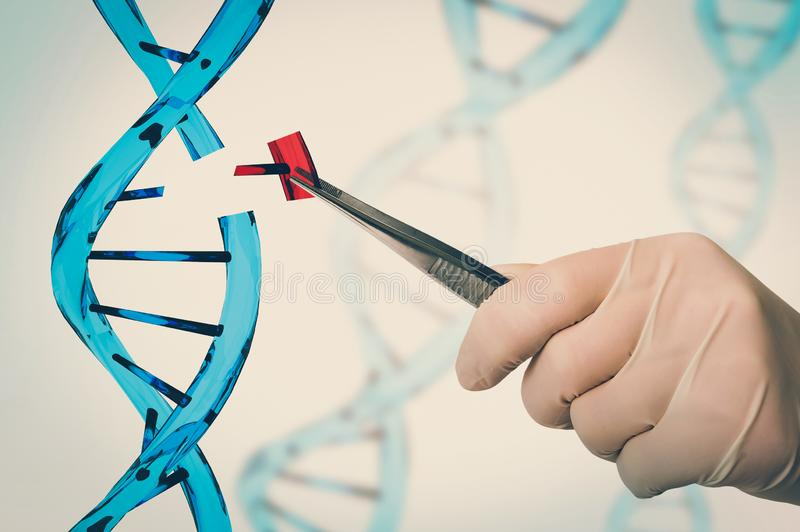 Genetic engineering and gene manipulation concept. Hand of scientist replacing DNA - genetic engineering and gene manipulation concept - retro style royalty free stock images
