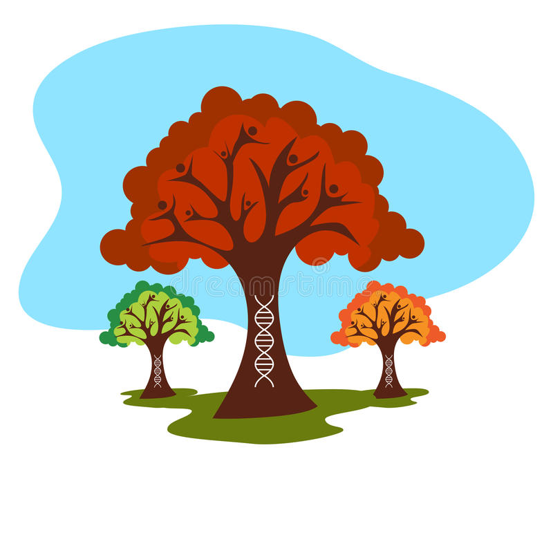 Genetic Family Tree History vector illustration