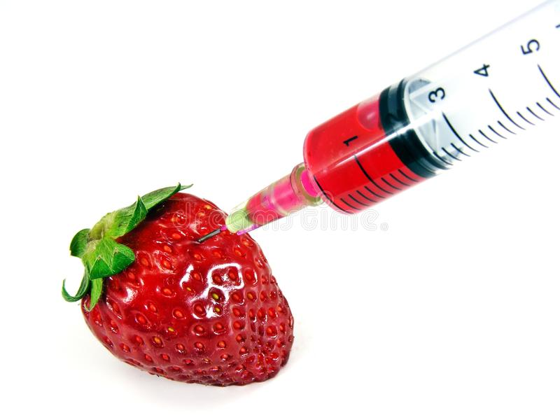 Genetic food engineering. Concept with strawberry & syringe royalty free stock photography