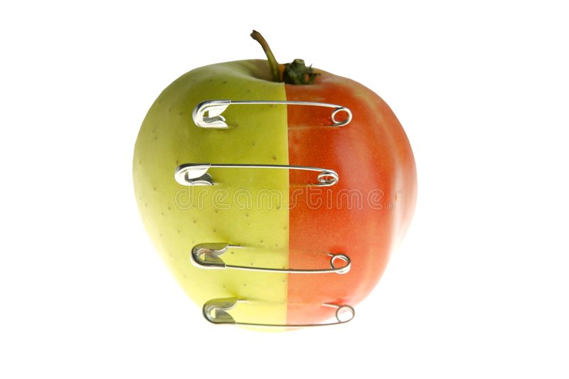 Genetic fruit manipulation with apple and tomato. Genetic fruit manipulation metaphor with apple and tomato stock images