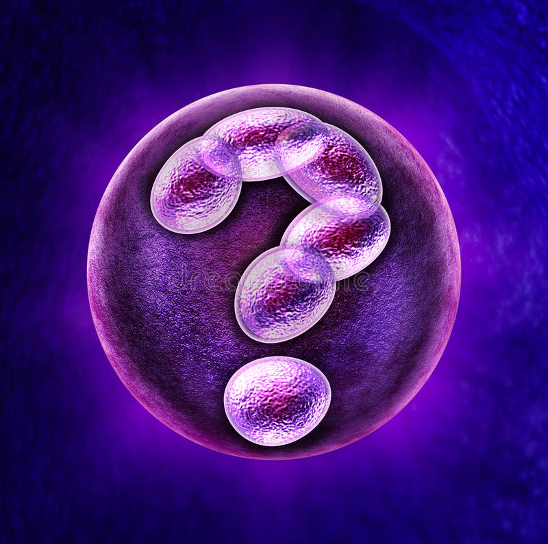 Genetic Questions. Medical health care concept with a fertilized human egg embryo and a group of dividing cells in the shape of a question mark as a concept for stock illustration