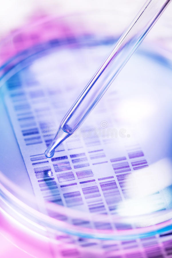 Genetic research royalty free stock images