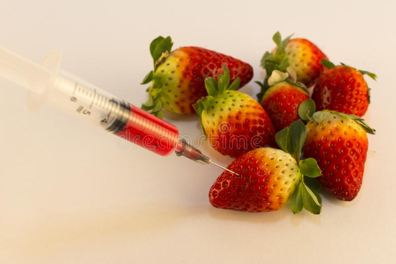 Fruit development genes. Genetic research, Genetically Engineered Fruits and Vegetables stock photos