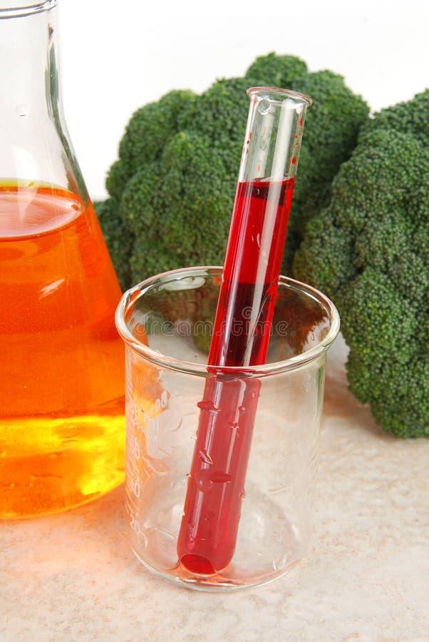 Genetically modified broccoli stock photos