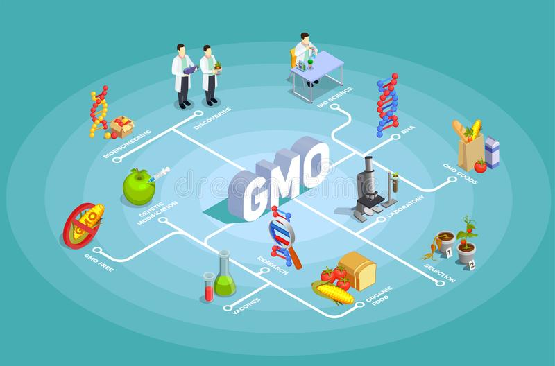 Genetically Modified Organisms Isometric Flowchart. On turquoise background with dna, research, organic food, gmo goods vector illustration vector illustration