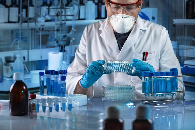 Geneticist holding multi well plate for genetic analytical in the clinical laboratory. Technician working with biological samples in genetical lab / geneticist royalty free stock image