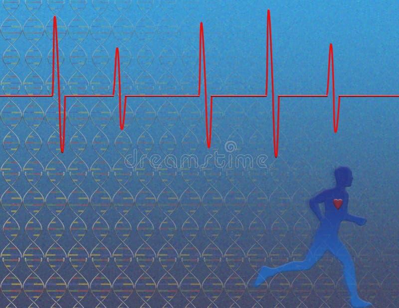 Genetics Heart Health stock illustration