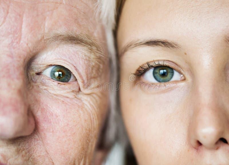 Genetikkonzept der grünen Augen der Familiengeneration lizenzfreie stockfotografie