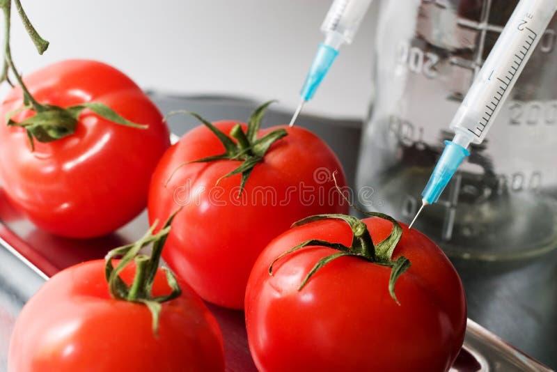 Genetisch experiment royalty-vrije stock afbeeldingen