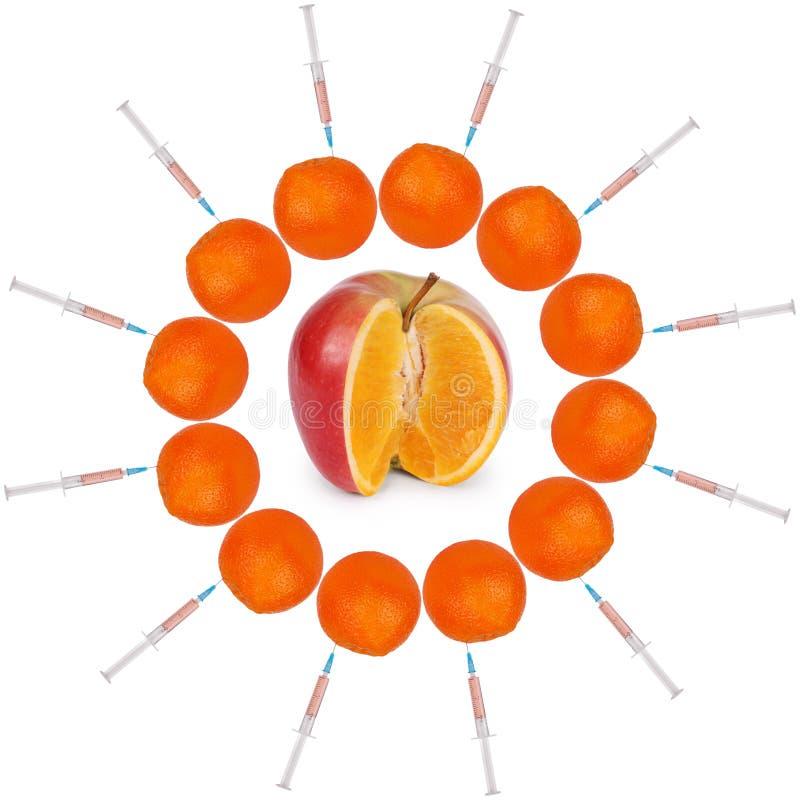 Genetisch gewijzigd voedsel stock afbeeldingen