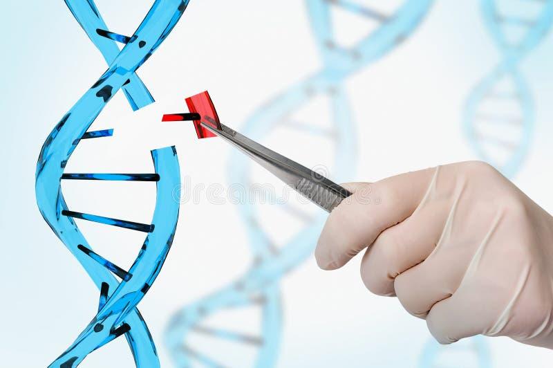 Genetische biologie en van de genmanipulatie concept stock afbeelding