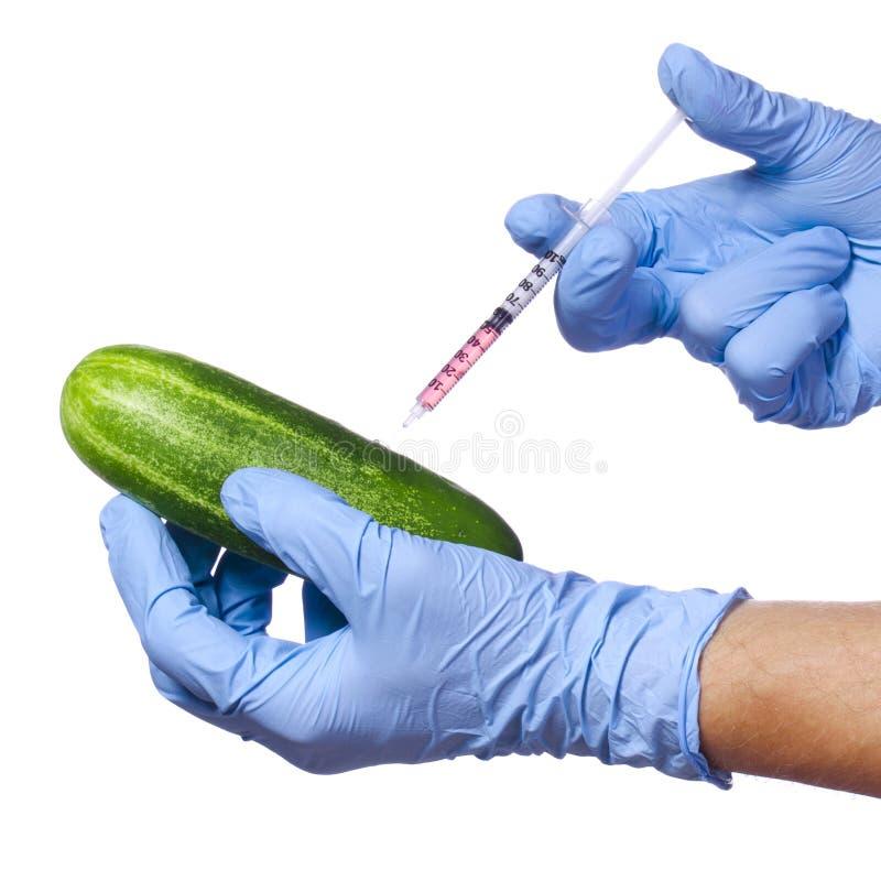 Genetisk injektion in i gurkan som isoleras på vit bakgrund. Genetiskt ändrad grönsak och injektionsspruta arkivfoto