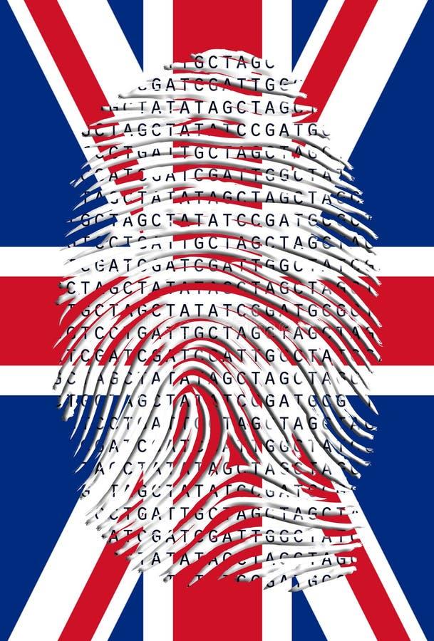 Genetiskt UK stock illustrationer