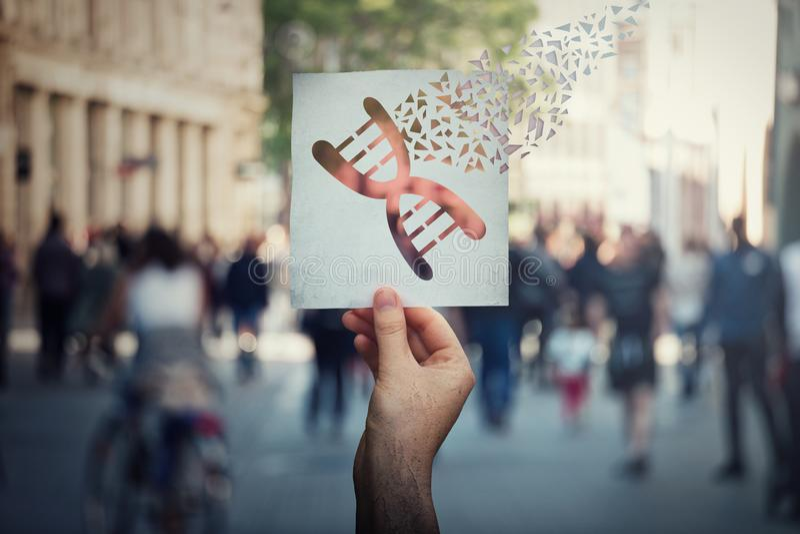Genetyczna manipulacja i DNA modyfikacja pojęcie jako ludzka ręka trzyma papier z genu edytorstwa symbolem łamającym w kawałki na zdjęcie royalty free