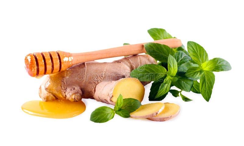 Gengibre, hortelã e mel sobre o fundo branco fotos de stock