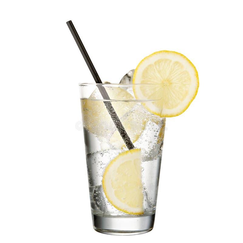 Genièvre et tonique avec le citron d'isolement sur le fond blanc images libres de droits