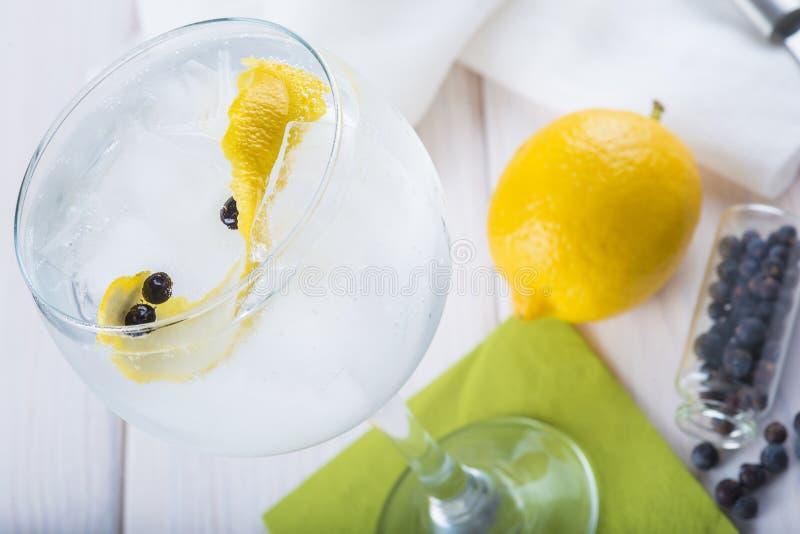 Genièvre et tonique sur un verre de highball photographie stock