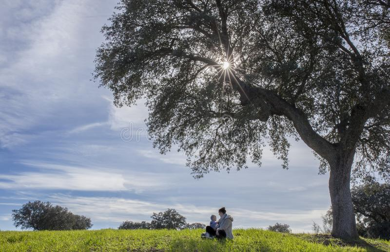 Genießen der Natur in der Familie stockbilder