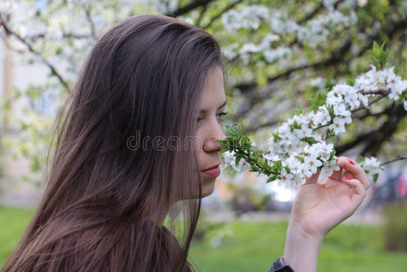 Genießen des Frühlinges lizenzfreie stockfotos
