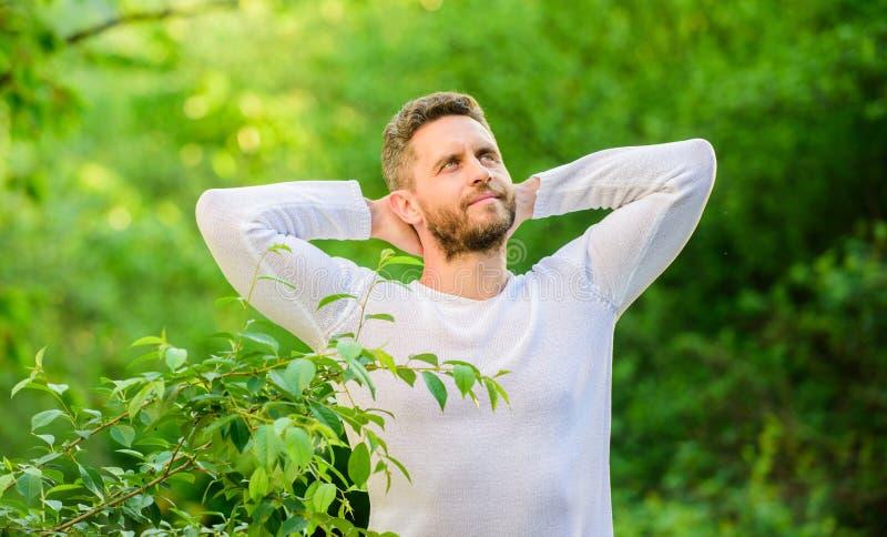 Genießen des grünen Lebens Mann in der Waldzeit zu denken ?kologisches Leben f?r Mann Mann am gr?nen Waldmorgen in der Natur lizenzfreie stockfotos