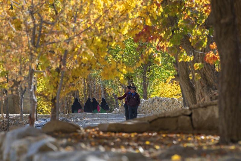 Genießen von Farbe des Herbstes lizenzfreies stockfoto