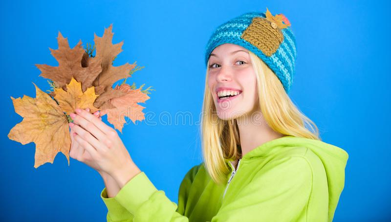 Geniet de herfst van seizoen De herfst skincare uiteinden Helder ogenblik Skincare en schoonheidsuiteinden De actieve vrije tijd  stock afbeeldingen