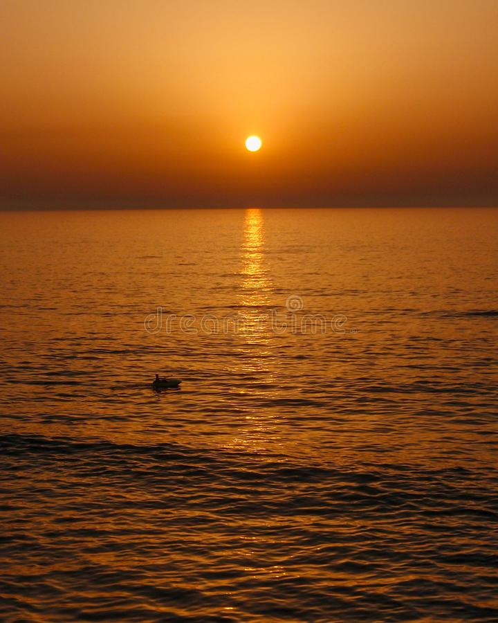 Geniet van elke zonsondergang, geniet eenvoudig van het leven en de grote genoegens dat met het komen royalty-vrije stock foto's
