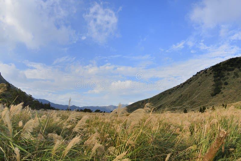 Geniet van mening van aard rond Menghuan-Vijver in Yangmingshan-berg stock foto's