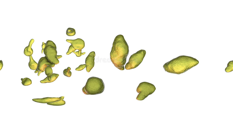 Genitalium do Mycoplasma das bactérias ilustração stock