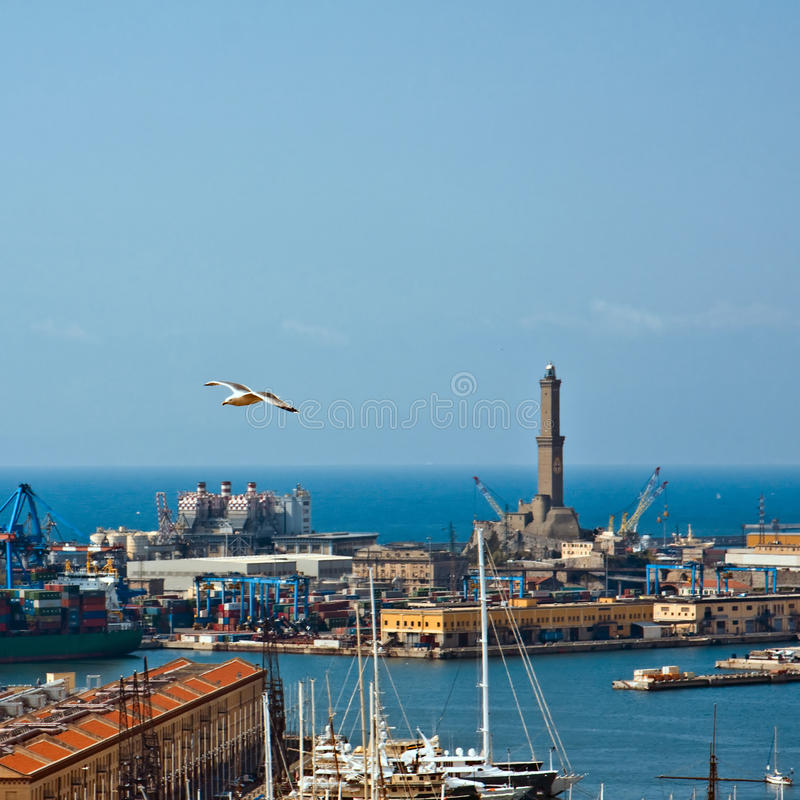 Download Genoa's Lighthouse stock image. Image of flying, boat - 10296079
