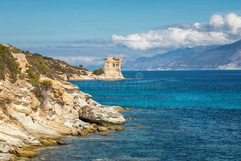 Genoese Turm bei Mortella nahe St. Florent in Korsika stockfoto