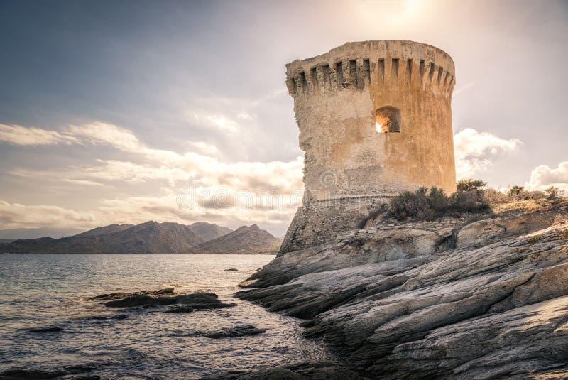 Genoese Turm bei Mortella nahe St. Florent in Korsika lizenzfreies stockbild