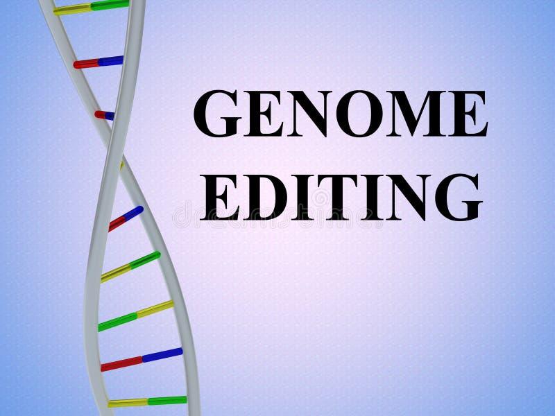 Genoma que corrige concepto ilustración del vector
