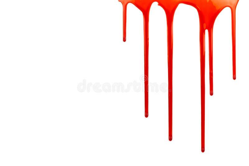 Genomblött blod på vit med kopieringsutrymme arkivbilder